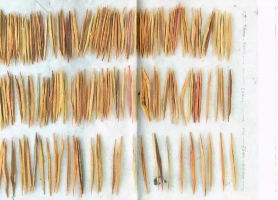 《微物萬狀》,頁114-115;頁110-111。